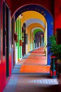 halls of color